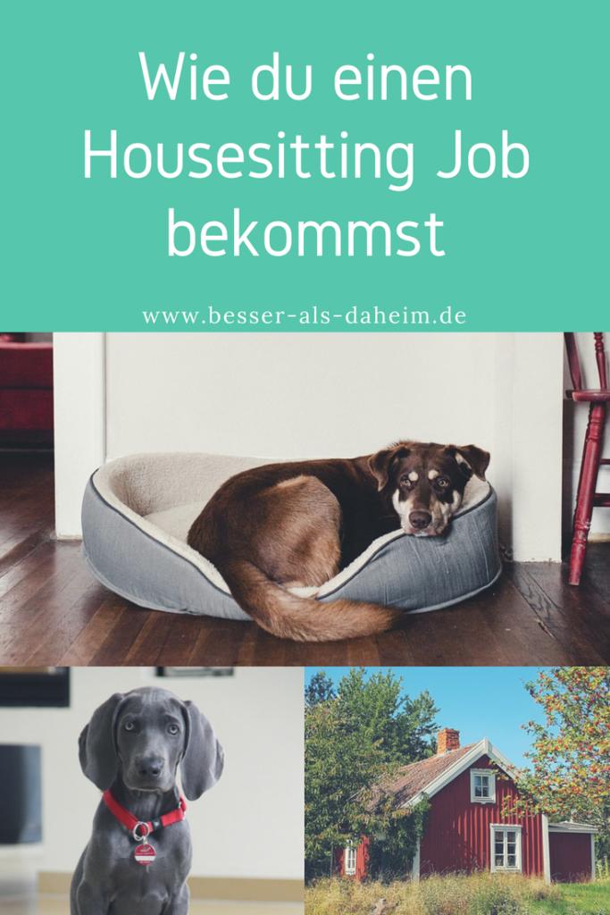 Wie du einen Housesitting Job bekommst